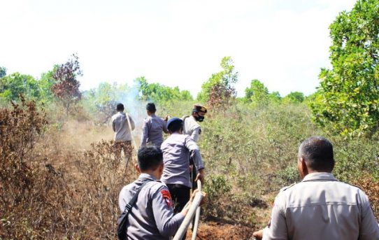 Titik Api Ditemukan, Personil Polda Kalsel Langsung Lakukan Pemadaman